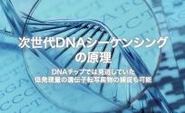 次世代DNAシーケンシングの原理